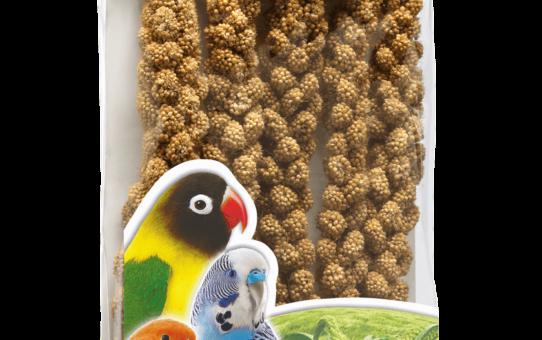 Сенегальское просо в колосьях РИО для попугаев