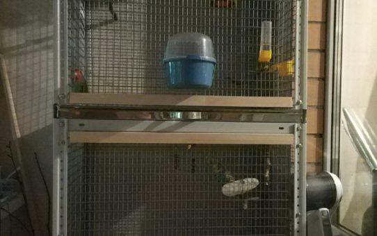 Клетка для попугая своими руками